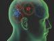 Neuromarketing: Kopf mit Zahnrädern im Inneren